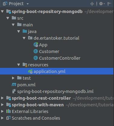 Spring Boot MongoDB Projektstruktur
